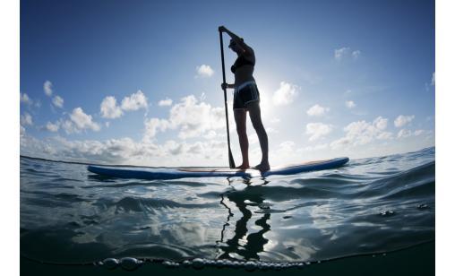 Stand Up Paddleboard - Ekerö/Jungfrusund